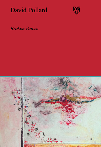 Cover of Broken Voices