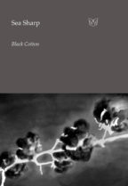 The cover of Black Cotton. An image of a branch of cotton, in a photographic negative.